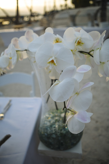 key west wedding photography, wedding decoration