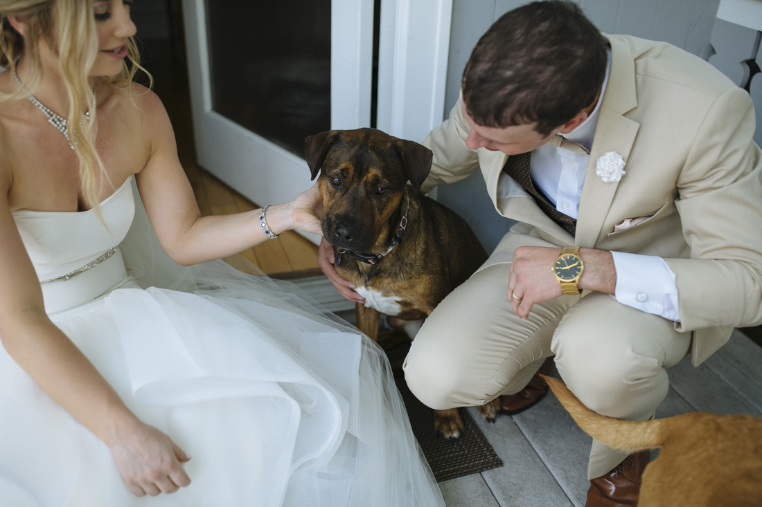 dogs at the wedding, key west photography, key west wedding, florida keys weddings, weddings by romi, bride and groom picture,