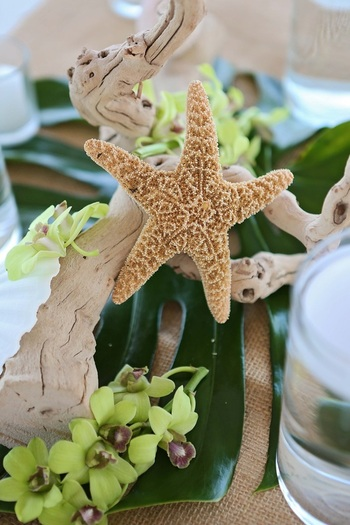wedding decoration, tropical wedding decoration, destination wedding, yacht club wedding, key west wedding photography,